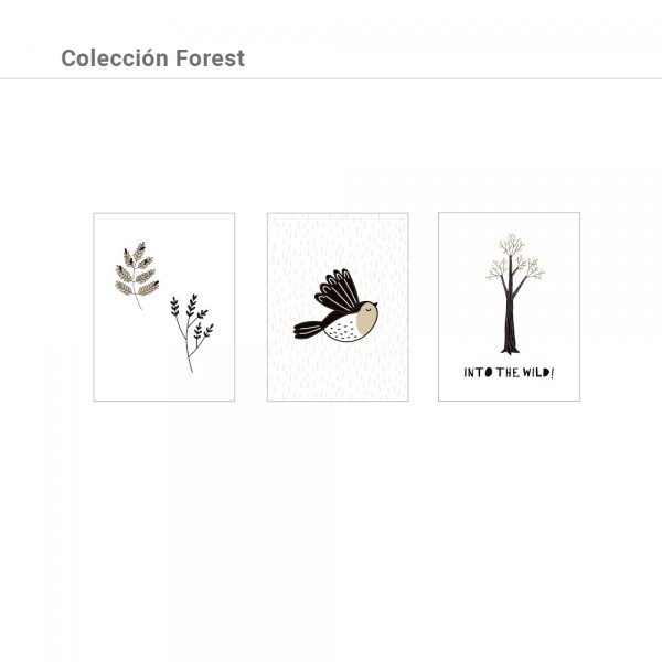 Colección Forest
