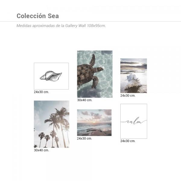 Colección Sea