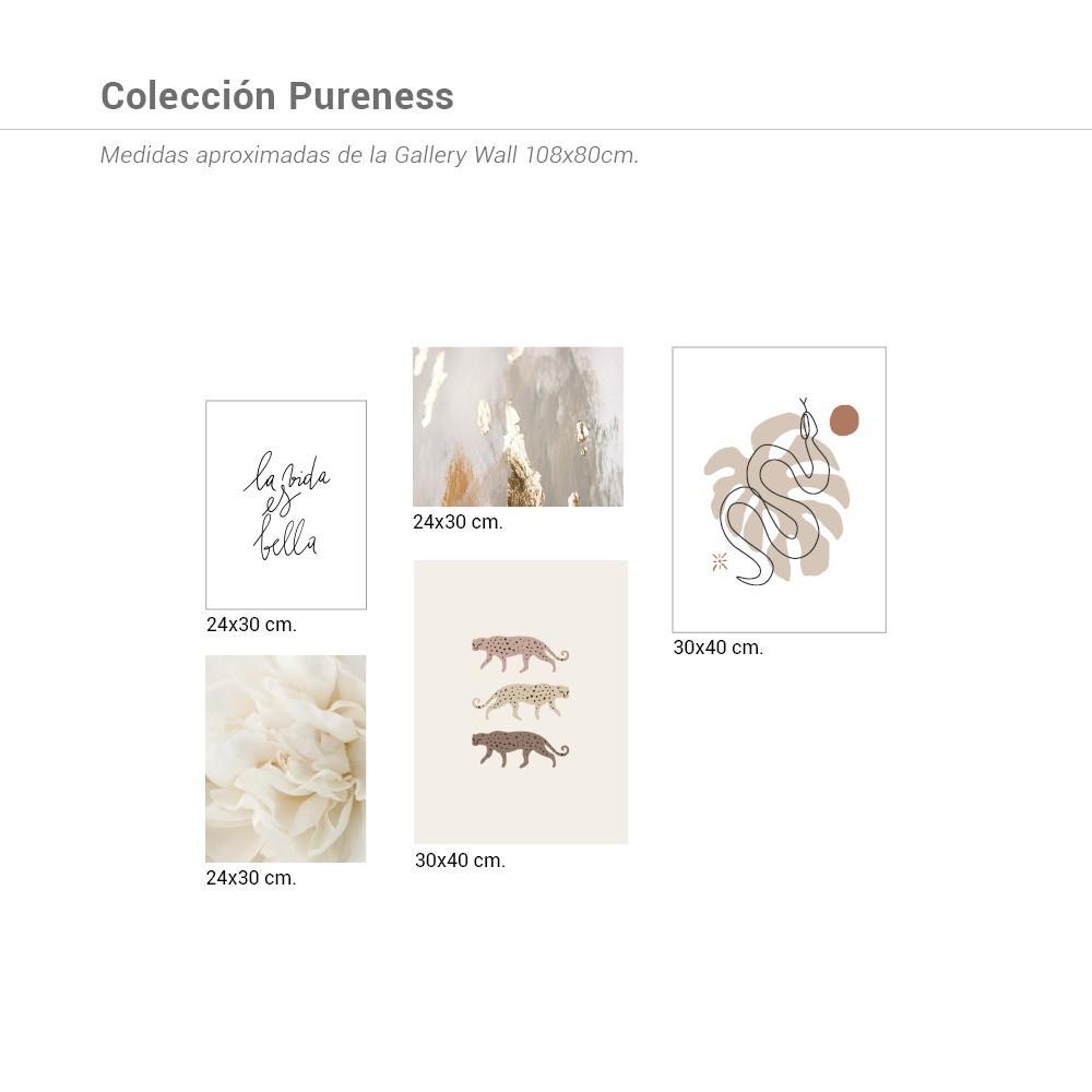 Colección Pureness