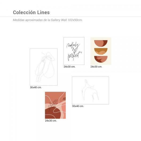 Colección Lines