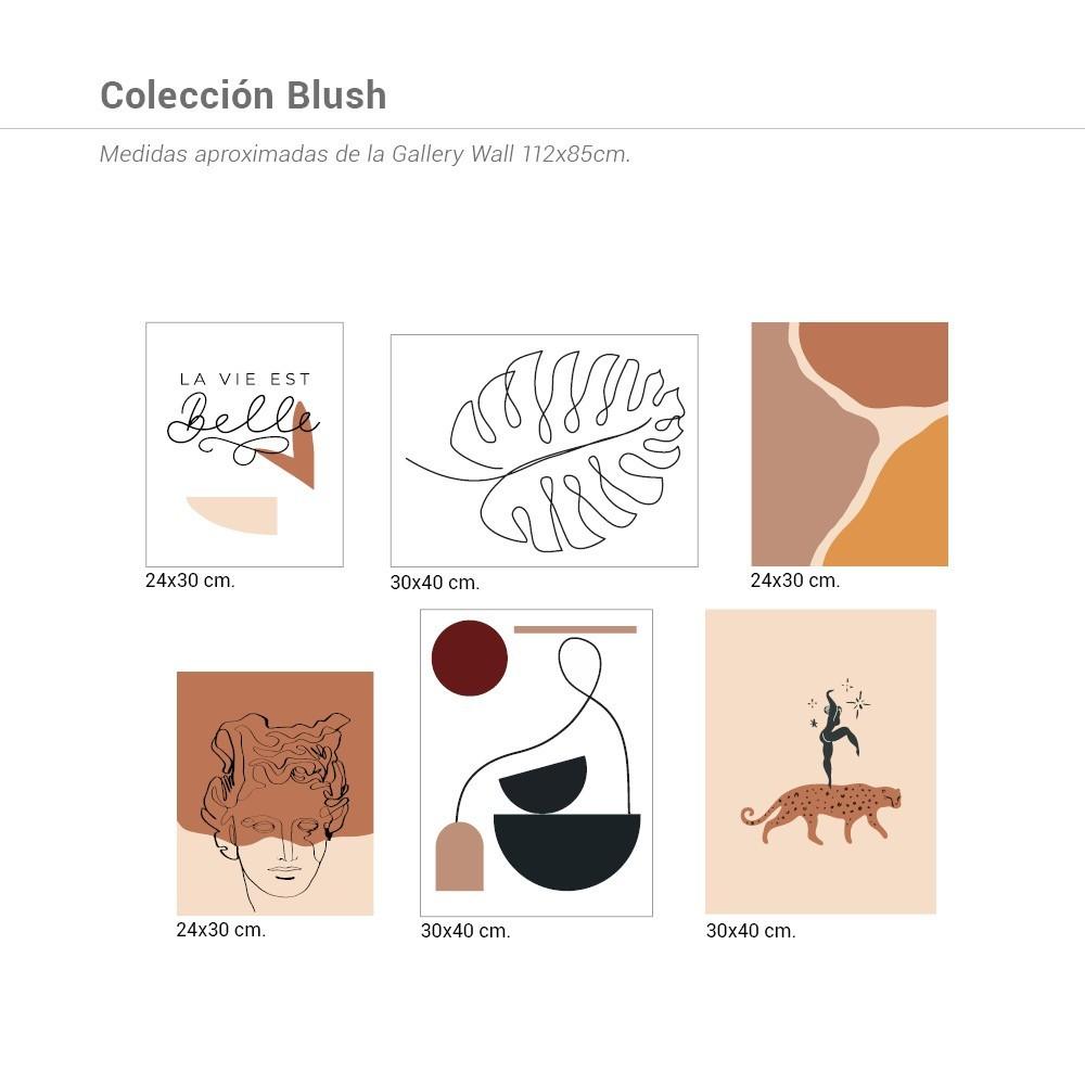 Colección Blush