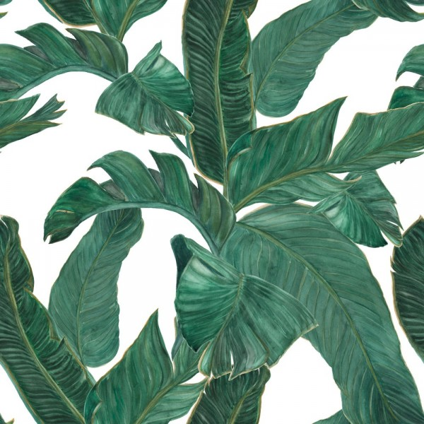 Papel Autoadhesivo Life In Tropic